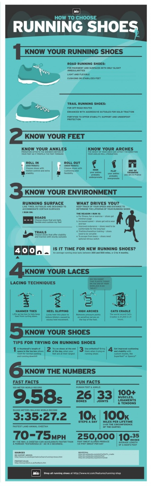 Running shoes infographic